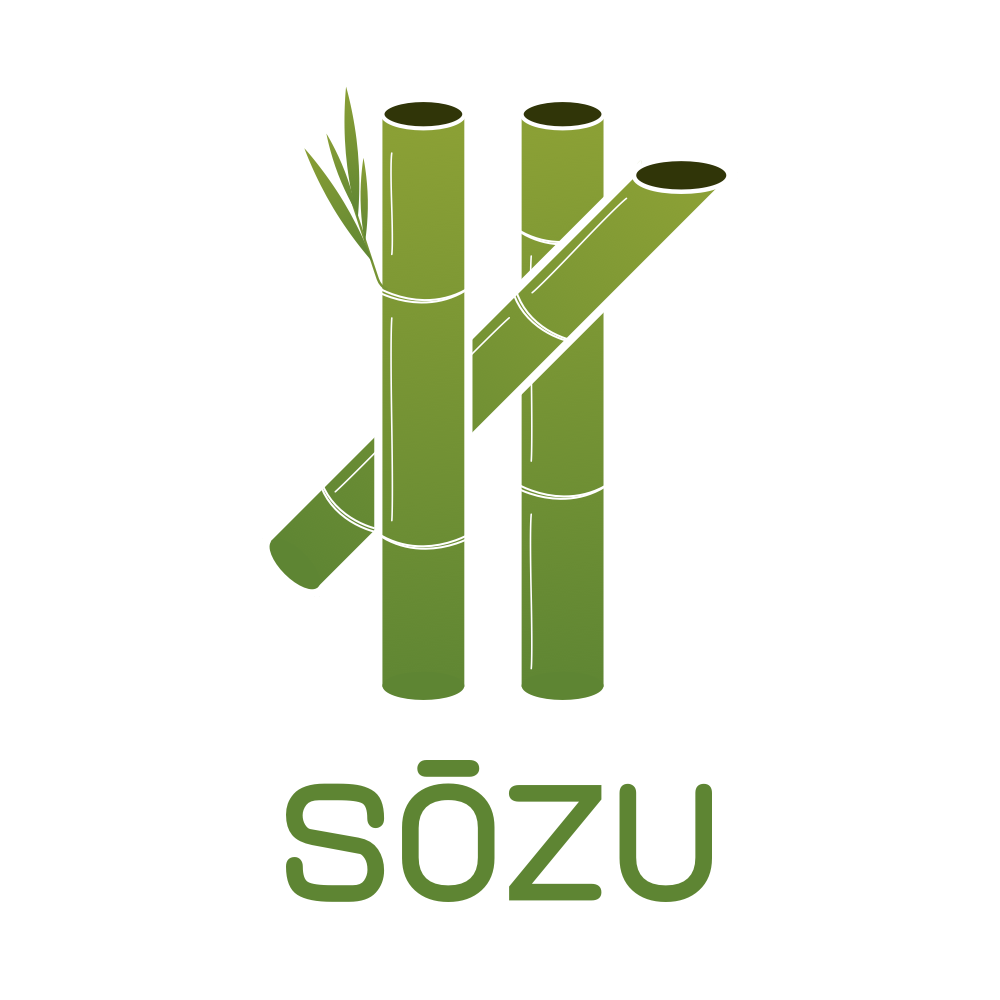 SŌZU - HTTP Reverse Proxy in Rust for Immutable Infrastructures